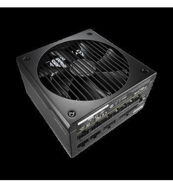 Ion+ 760W Platinum